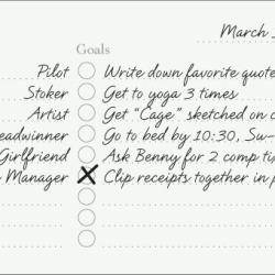 Week's Plan