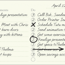 Day's Plan